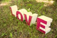 Lettres d'amour sur l'herbe verte dans le style grunge Image stock