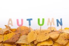 Lettres d'automne Photos stock
