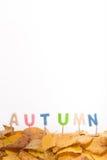 Lettres d'automne Photographie stock