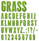 Lettres d'herbe Photo libre de droits