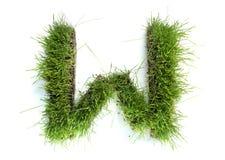 lettres d'herbe effectuées Photo libre de droits