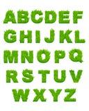 Lettres d'herbe verte d'alphabet Photographie stock