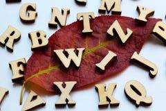 Lettres en bois sur la feuille d'automne Images stock