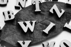 Lettres en bois sur la feuille d'automne Photographie stock libre de droits