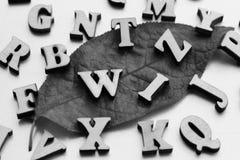 Lettres en bois sur la feuille d'automne Images libres de droits