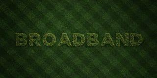 - Lettres fraîches d'herbe avec des fleurs et des pissenlits - 3D À BANDE LARGE a rendu l'image courante gratuite de redevance Photographie stock libre de droits