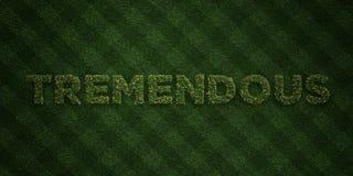 - Lettres fraîches d'herbe avec des fleurs et des pissenlits - 3D ÉNORME a rendu l'image courante gratuite de redevance illustration de vecteur
