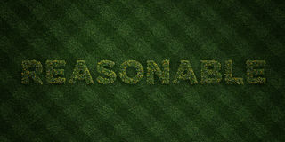 - Lettres fraîches d'herbe avec des fleurs et des pissenlits - 3D RAISONNABLE a rendu l'image courante gratuite de redevance illustration de vecteur