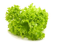 Lettuce. On a white background Royalty Free Stock Photography
