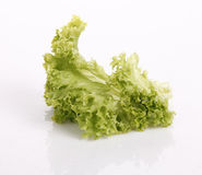 Free Lettuce Royalty Free Stock Photography - 20580087