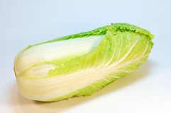 Lettuce. Close view of fresh and clean lettuce stock photos