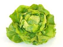 Lettuce. Isolated on white background Stock Photos