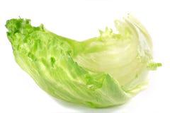 Lettuce. On isolated white background Stock Image