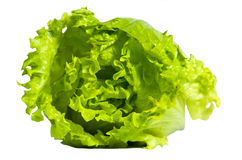 Lettuce. Fresh green lettuce isolated on white background Royalty Free Stock Photography