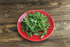 Lettuce arugula Stock Photos