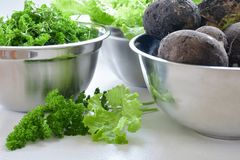 Lettuce, black radish and parsley harvest. Harvest in stainless steel bowls: lettuce leaves, black radishes, parsley Royalty Free Stock Photo
