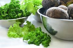 Lettuce, black radish and parsley harvest. Harvest in stainless steel bowls: lettuce leaves, black radishes, parsley Stock Images