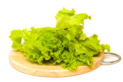 Lettuce on board Royalty Free Stock Images