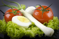 Lettuce, boiled egg tomato, onions Stock Photography