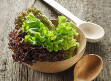 Lettuce in bowl. Lettuce in wooden bowl on old wooden table royalty free stock photos