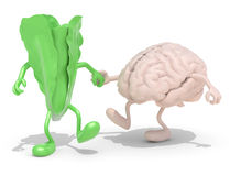 Lettuce and brain that walking hand in hand. Lettuce and brain with arms and legs that walking hand in hand, 3d illustration Stock Photography