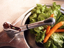 Lettuce and carrots stock photography