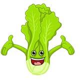 Lettuce Cartoon Stock Photos