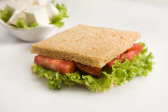 Lettuce, Cheese  Potato Salad Sandwich on Toasted Brown Bread Royalty Free Stock Images