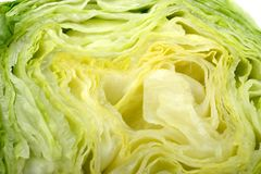 Lettuce close Stock Images