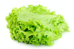 Lettuce close up Stock Photo