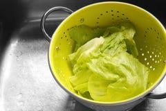 Lettuce colander Stock Images