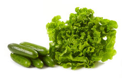 Lettuce and cucumbers Stock Photography