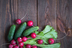 Lettuce cucumbers and radishes Royalty Free Stock Photography