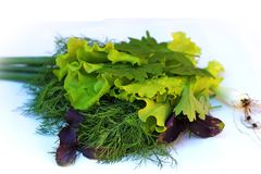 Lettuce, dill, parsley, basil, onions. Lettuce, dill, basil, onions on a white background. a good addition to the salad. vegetables. a mixture of herbs royalty free stock images