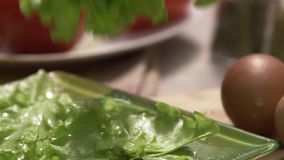 Lettuce falling on the plate - video in slow motion. Scene. Lettuce falling and splashing with water drops stock footage