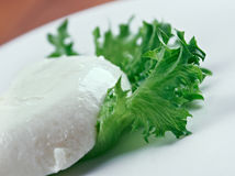 Lettuce and feta cheese Royalty Free Stock Photo