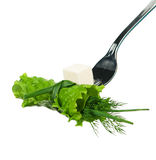 Lettuce on a fork Stock Image