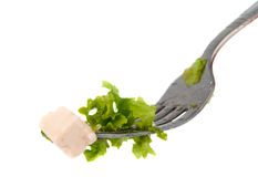 Lettuce on a fork isolated Royalty Free Stock Images