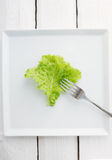 Lettuce with a fork Royalty Free Stock Images