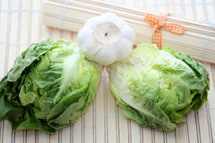 Lettuce and garlic Royalty Free Stock Photography