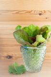 Lettuce in glass bowl Royalty Free Stock Photo