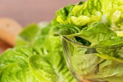 Lettuce in glass bowl on a wooden plate Royalty Free Stock Images