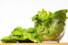 Lettuce in glass bowl on a wooden plate Stock Photography