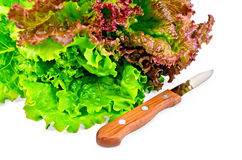 Lettuce green and red with a knife Stock Photos