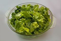 Lettuce and green salad in the bowl on the table Royalty Free Stock Image
