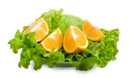 Lettuce and halfs of orange Stock Photo