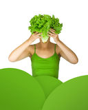Lettuce head Royalty Free Stock Photos