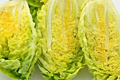 Lettuce hearts Royalty Free Stock Image