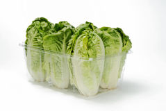 Lettuce hearts Royalty Free Stock Images
