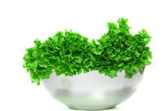 Lettuce in an iron bowl Stock Photography